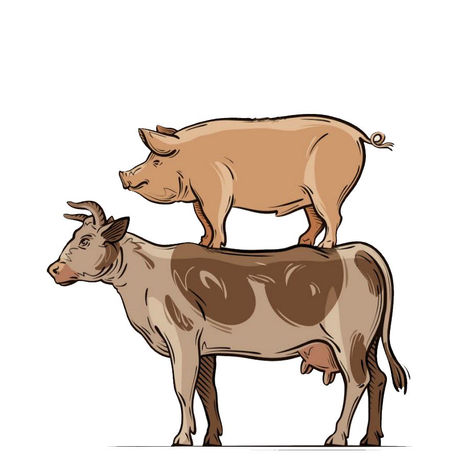 свинья и корова spds